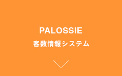 PALOSSIE Customer Traffic Counting System
