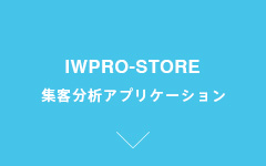 IWPRO-STORE Customer Traffic Analysis Web System